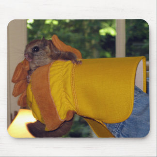Flying Squirrel Mouse Mat