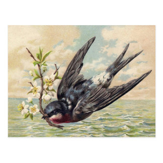 Flying swallow with more flower twig postcard