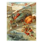 Flying Turkey Aeroplane Pumpkin Apple Pear Corn Postcard