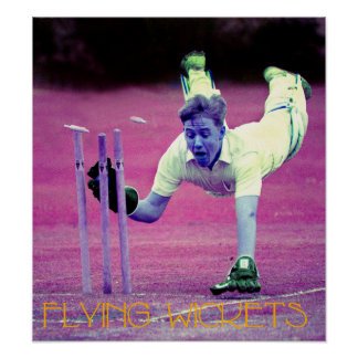 Flying Wickets Poster
