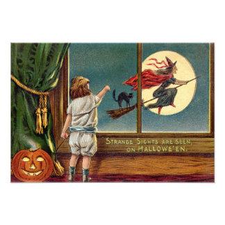 Flying Witch Black Cat Ful Moon Pumpkin Art Photo