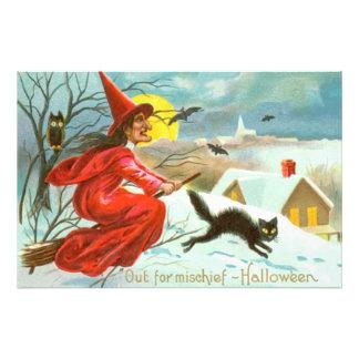 Flying Witch Black Cat Owl Bat Snow Photo Print