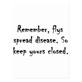 Flys spread disease. postcard