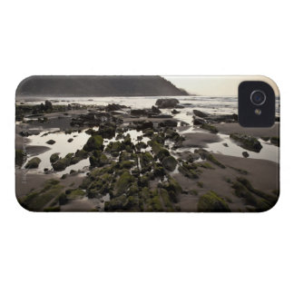 Flysch in the coast of Deba, Guipuzcoa, Basque iPhone 4 Cases