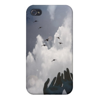 Flyte iPhone 4 Cases