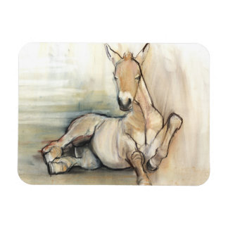 Foal 2012 rectangular photo magnet
