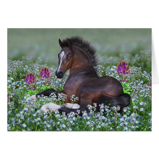 Foal and Flowers Blank Greeting Card