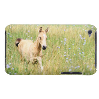 Foal and Flowers iPod Case-Mate Case