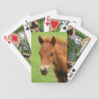 Foal Chesnut New Forest Pony cute playing cards