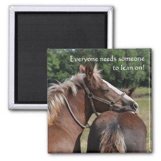 Foal friendship magnet