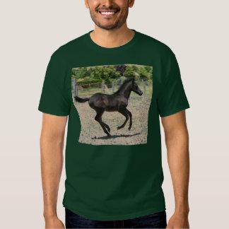 Foal Frolic T-shirts