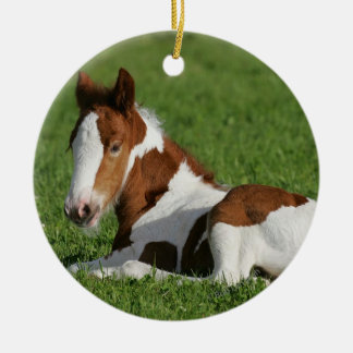 Foal Laying in Grass Round Ceramic Decoration