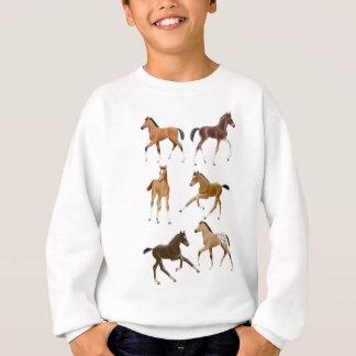 Foals Sweatshirt