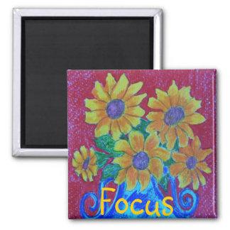 Focus Magnet