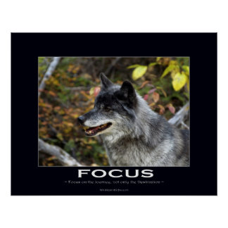 FOCUS Motivational Poster