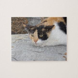 Focused Cat Jigsaw Puzzle