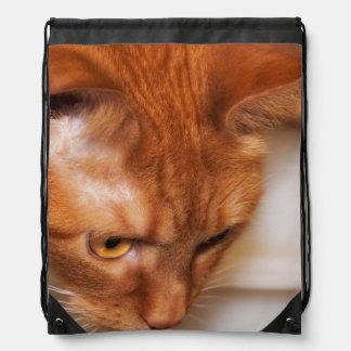 Focused Humane Society cat Drawstring Bag