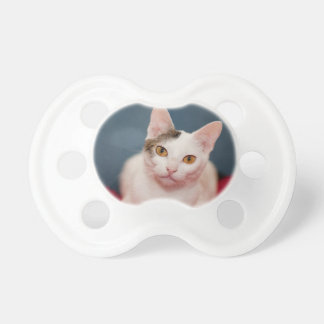 Focused Kitty Cat BooginHead Pacifier