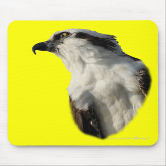 Focused Osprey Mouse Pads