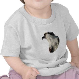 Focused Osprey T Shirt