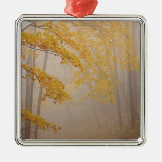 Fog and Autumn foliage, Great Smoky Mountains Silver-Colored Square Decoration