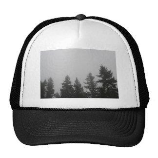 Fog anf Fir Trees - Photograph Mesh Hats