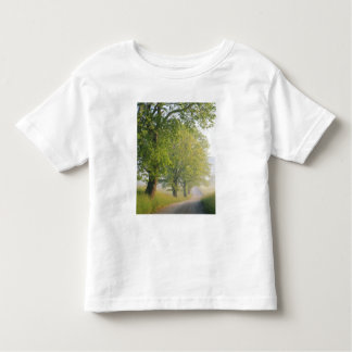 Fog covered road, Cades Cove, Great Smoky Toddler T-Shirt