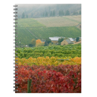Fog creeps over Gehring Brothers Winery nestled Notebook