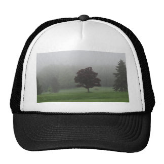 Fog Filled Landscape Cap