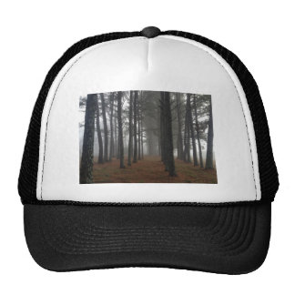 Fog in a forest trucker hat