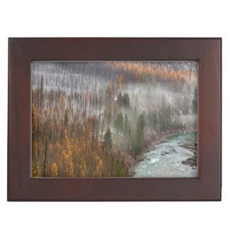 Fog Rolls In On Autumn Larch Trees Keepsake Box