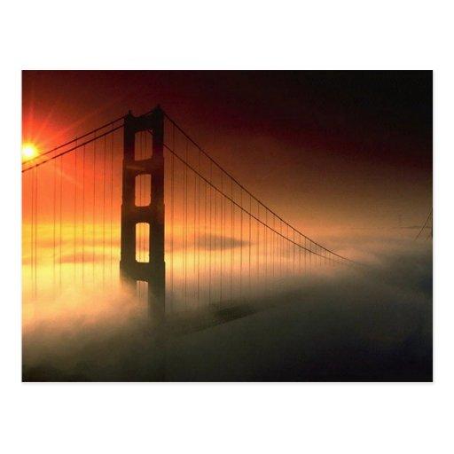 Fog Shrouded Golden Gate Postcard
