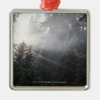 Fog & Sun Beams in a Washington Forest Christmas Ornament