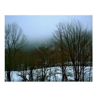 Foggy Vermont Winter Postcard