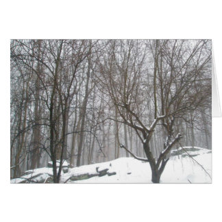 Foggy Winter Day Note Card