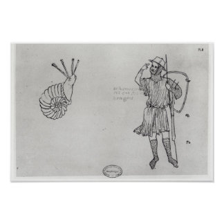 Fol.2 Snail and Hungarian soldier Poster