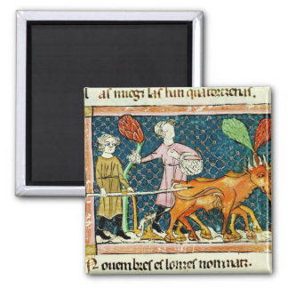 Fol.59r October: Ploughing Square Magnet