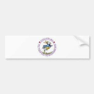 Follow me - I'll take you to Wonderland! Bumper Sticker