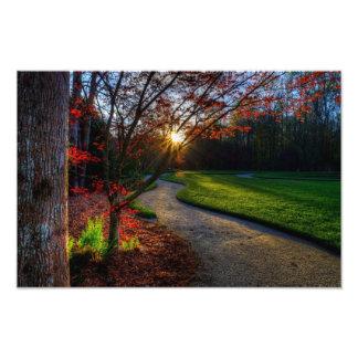 Follow the path photo art