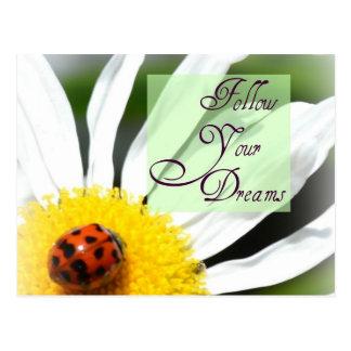 Follow Your Dreams Ladybug Post Card