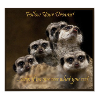 Follow Your Dreams! Poster