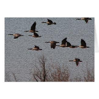 Follow your Heart - Geese Card
