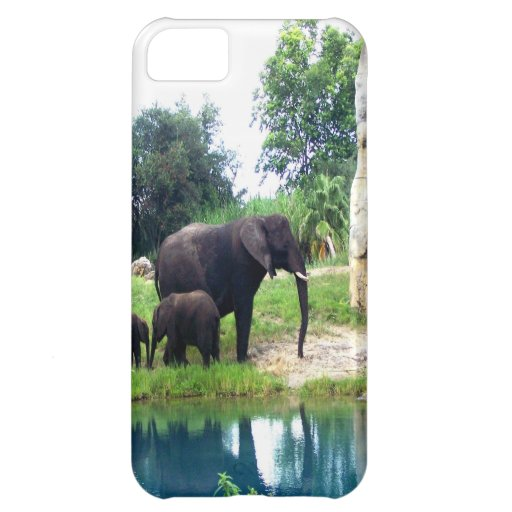 Following mom and love Animal Kingdom iPhone 5C Cover