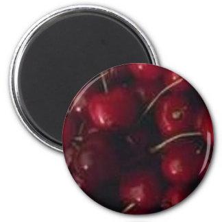 food004 refrigerator magnets