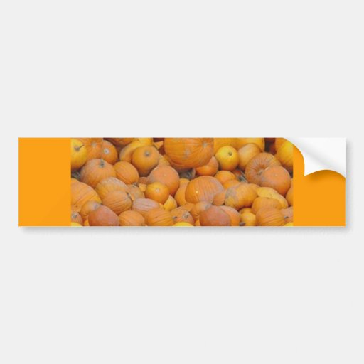 food044 bumper sticker