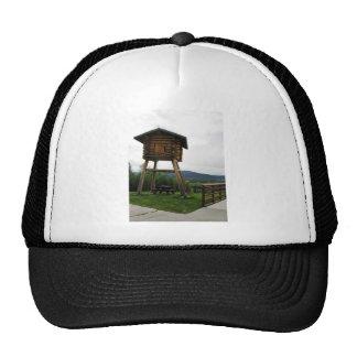 Food Cache at Tetlin's National Wildlife Refuge Vi Mesh Hat