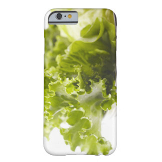 Food, Food And Drink, Vegetable, Lettuce, Barely There iPhone 6 Case