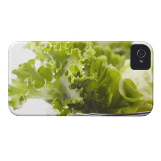 Food, Food And Drink, Vegetable, Lettuce, iPhone 4 Covers