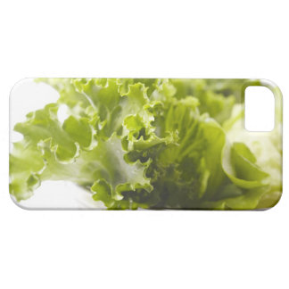 Food, Food And Drink, Vegetable, Lettuce, iPhone 5 Cover