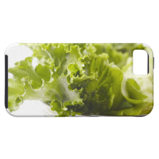 Food, Food And Drink, Vegetable, Lettuce, iPhone 5 Covers